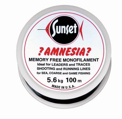 Jenzi. Sunset Amnesia